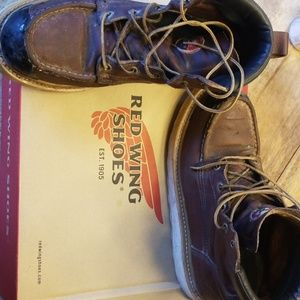 Redwing Irish Setters